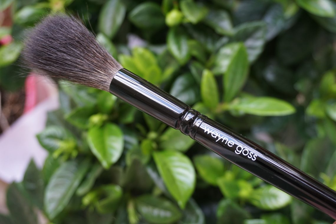 Wayne Goss Holiday 2017 Brush
