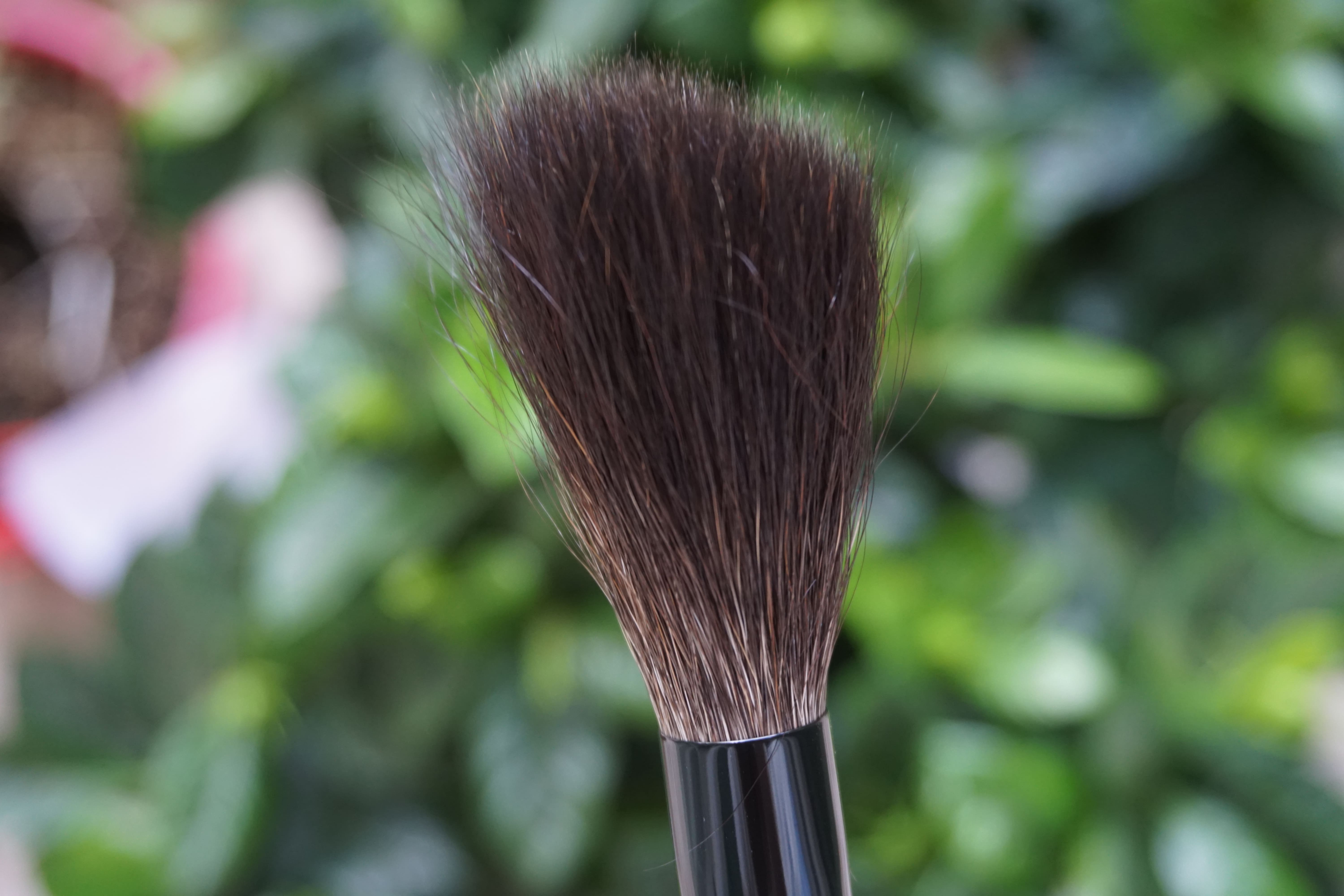 Wayne Goss 2017 Brush hair