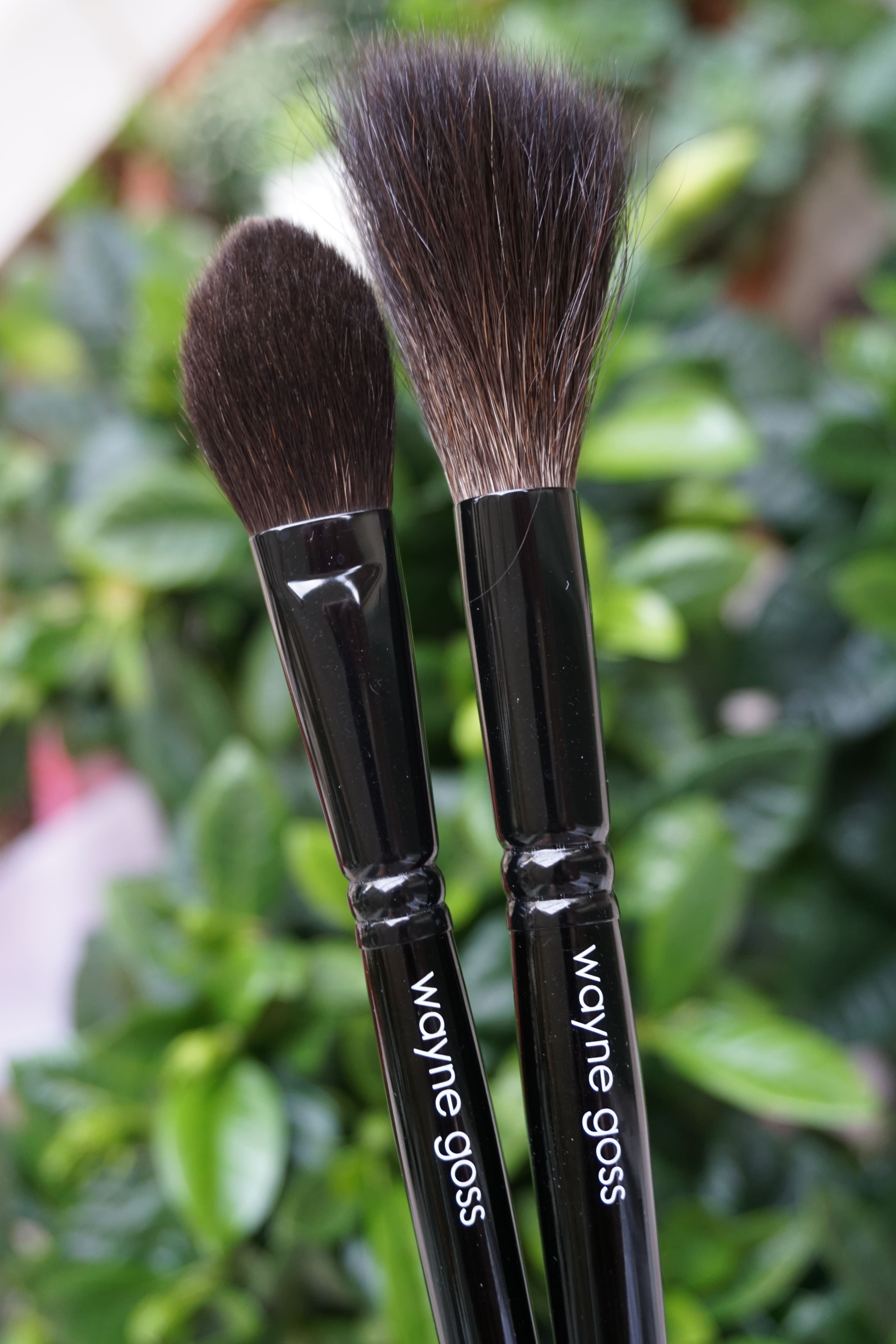 Wayne Gosse 2017 brush vs AirBrush
